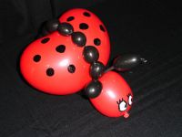 Ballon Coccinelle